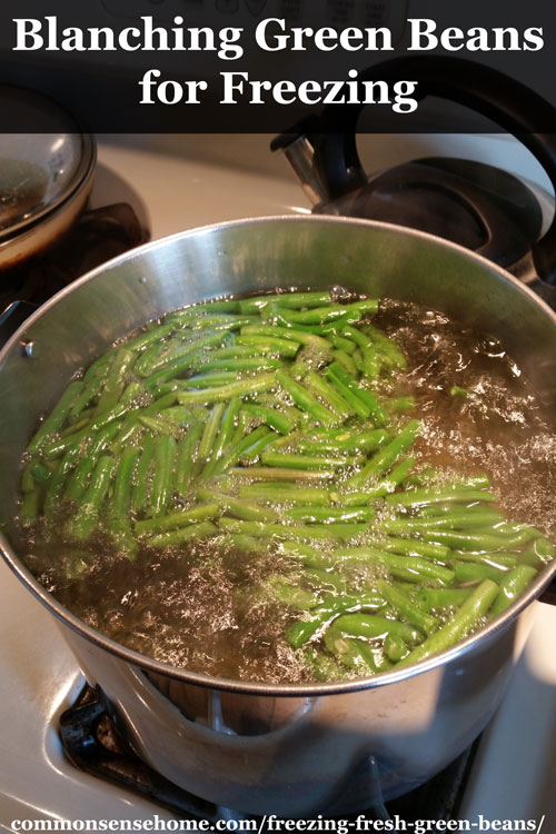 How To Cook Fresh Yellow Beans From The Garden