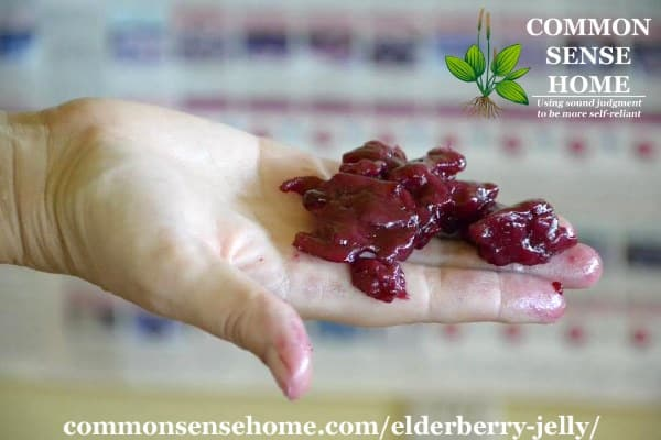 elderberry jelly mistake