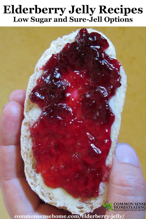 Two homemade elderberry jelly recipes - low sugar elderberry jelly thickened with Pomona's Pectin, and old fashioned elderberry jelly with Sure-Jell.