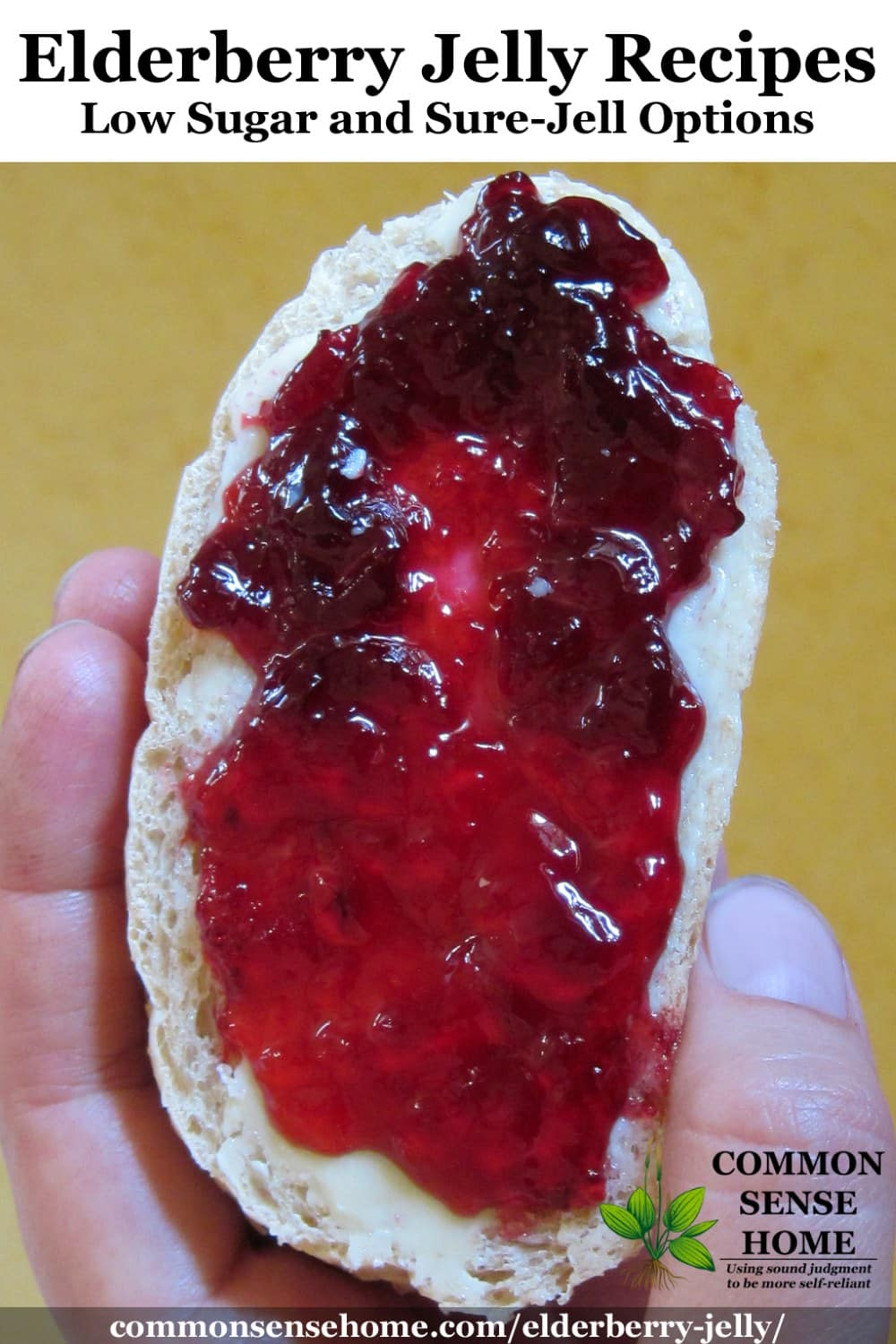elderberry jelly on toast
