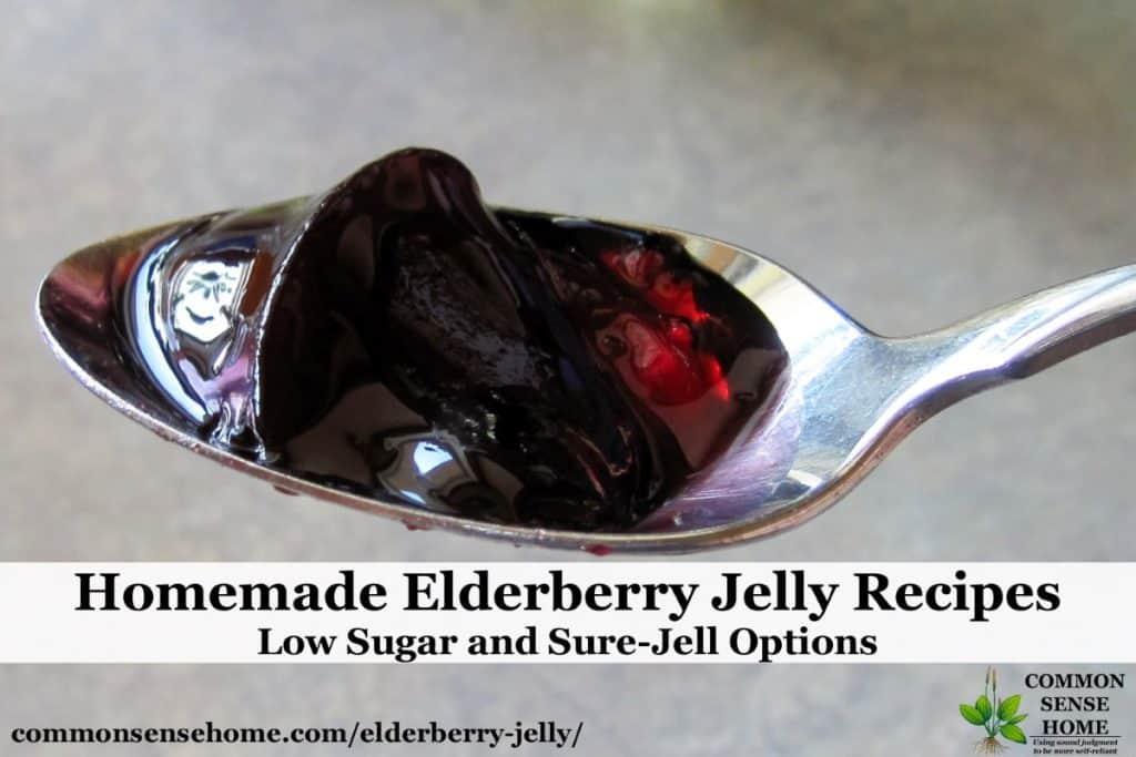 elderberry jelly on spoon