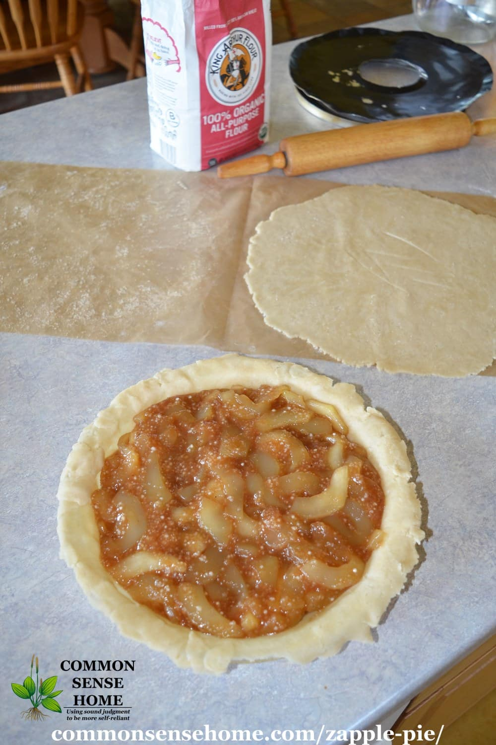 zucchini apple pie with top crust off