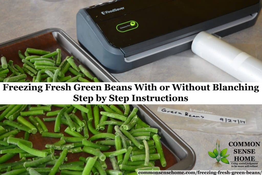 freezing fresh green beans - flash frozen beans on cookie sheet on left with vacuum sealer on right