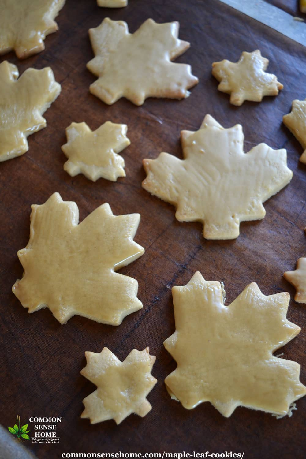 maple leaf cookies with maple glaze