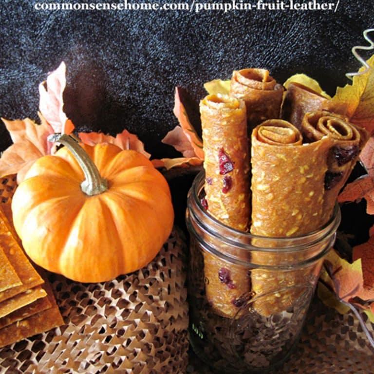 Pumpkin Fruit Leather – Tastes Like Portable Pumpkin Pie