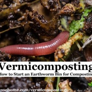 vermicomposting worm