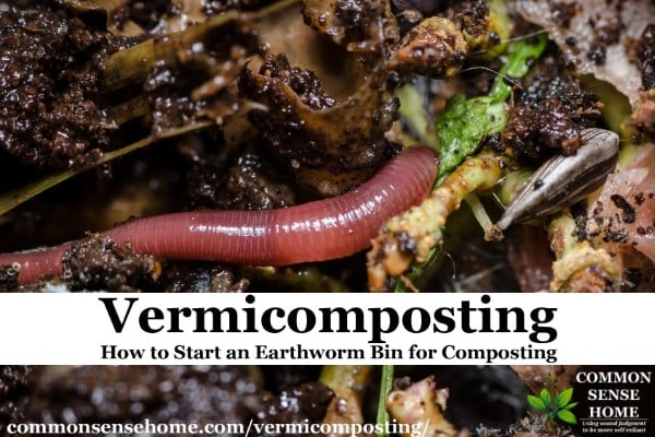 vermicomposting worm