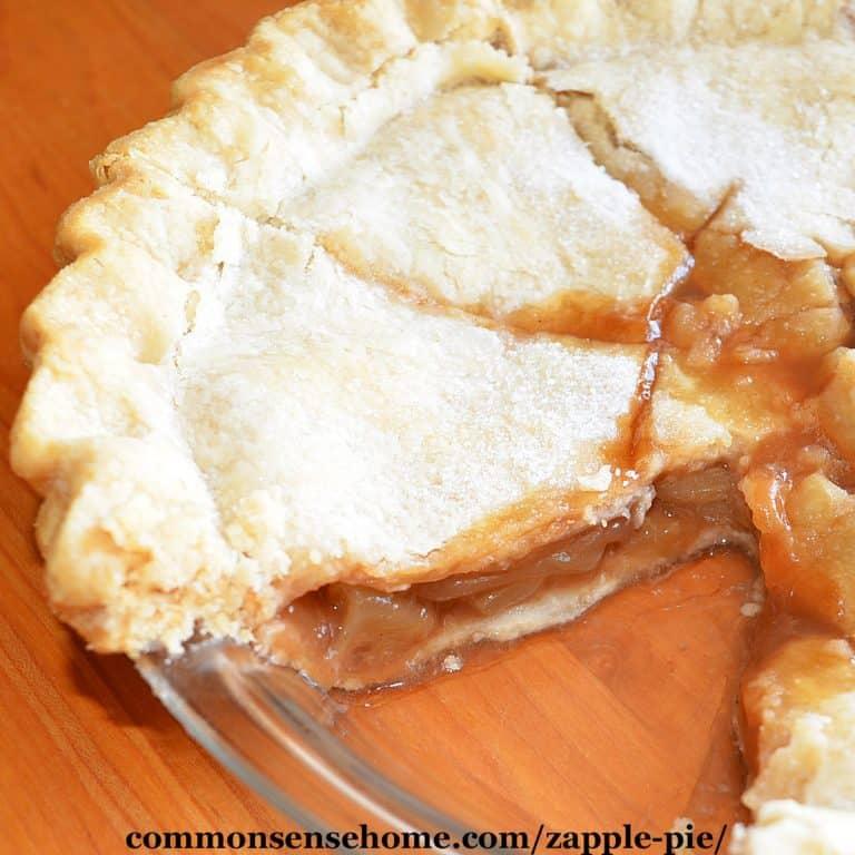 "Zucchini ""Apple"" Pie (Mock Apple Pie Made with Zucchini)"