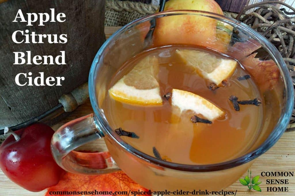 Apple citrus blend cider