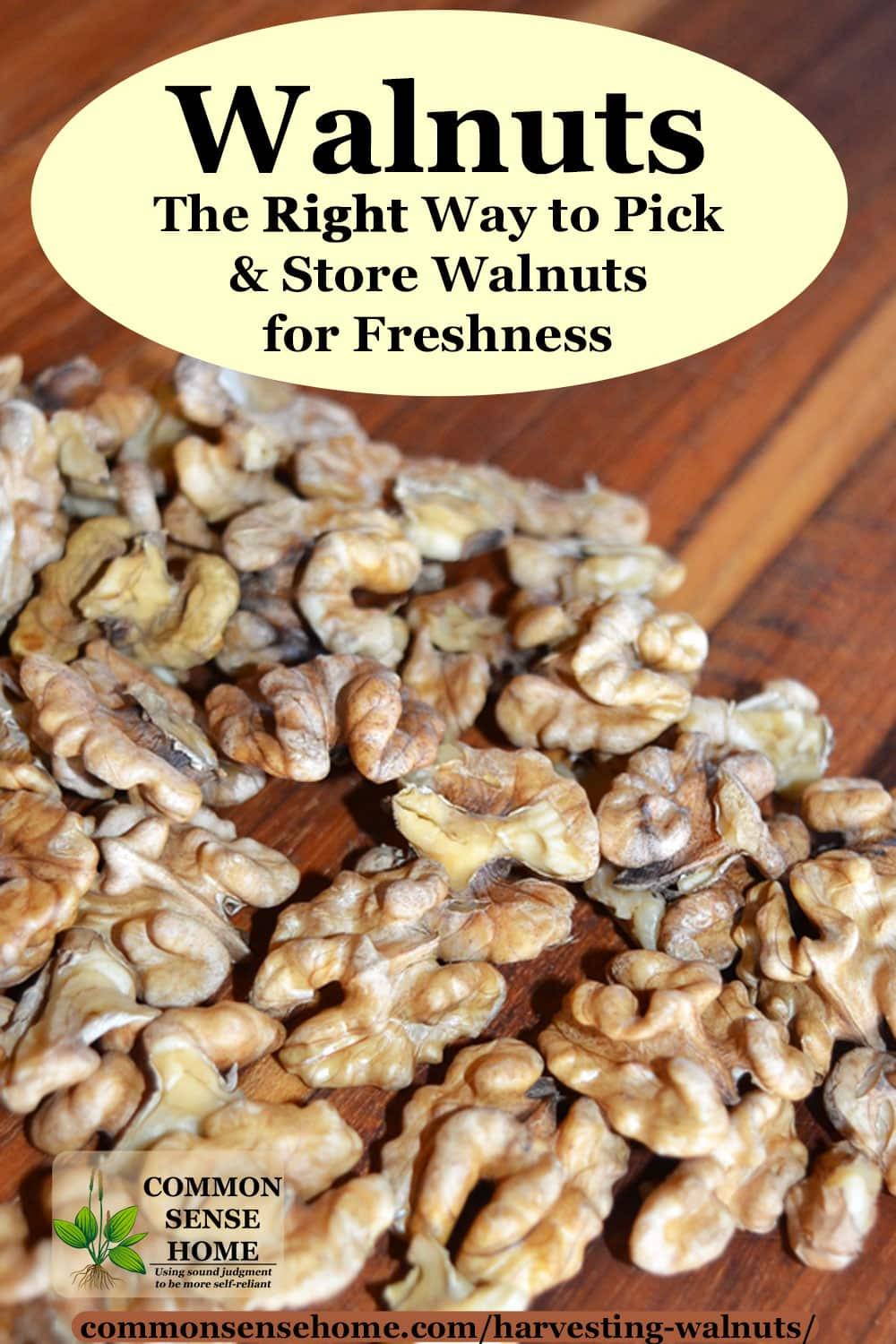 fresh walnuts on cutting board