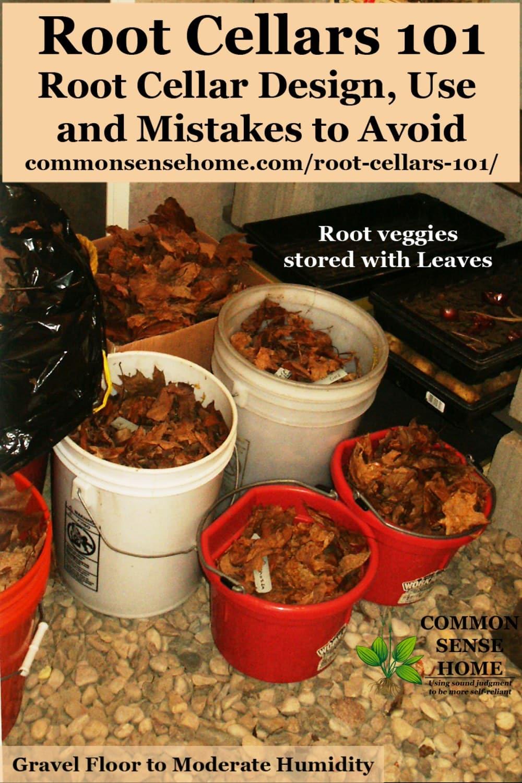 root cellar design