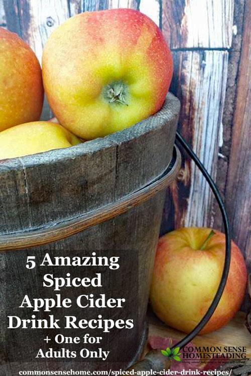 Enjoy the flavors of the season with homemade spiced apple cider, tart cranberry apple cider, spiced pumpkin cider, apple citrus cider & fallen apple cider.
