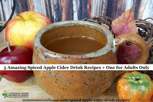 5 Amazing Spiced Apple Cider Drink Recipes + One for Adults Only
