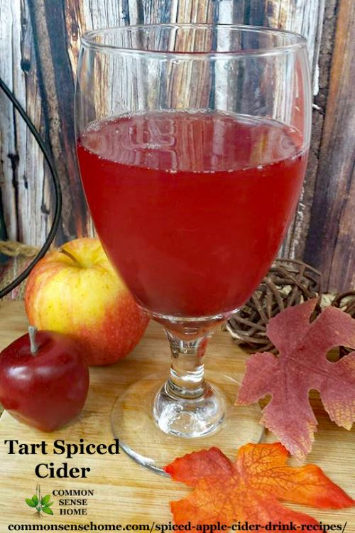 Tart spiced cider