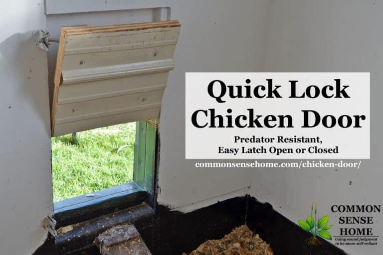 Quick Lock Chicken Door – Predator Resistant, Easy Latch Open or Closed