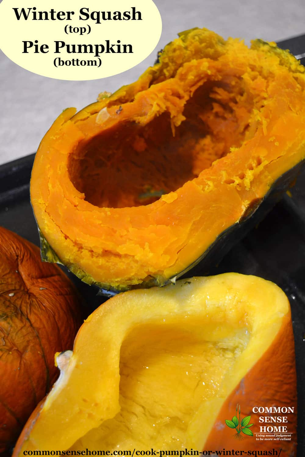 cooking pumpkin and winter squash