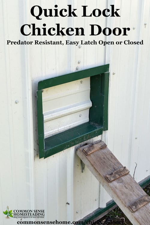 This sturdy chicken door design is easy to use, not too tough to install, and will protect your chicken coop and chickens from predators and bad weather.