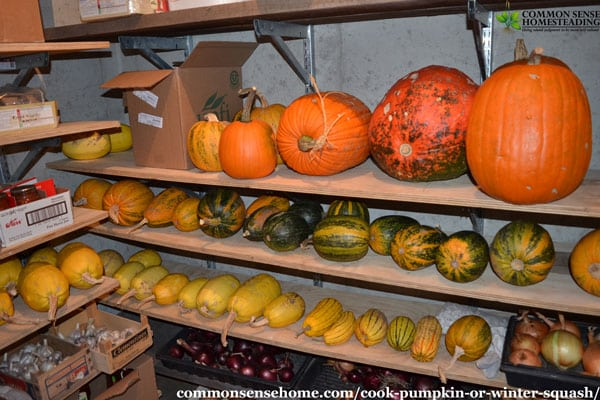 How to cook pumpkin in the oven, on the stove and in the microwave, plus tips for sweeter pumpkin, how much puree you get from one pumpkin and recipes.