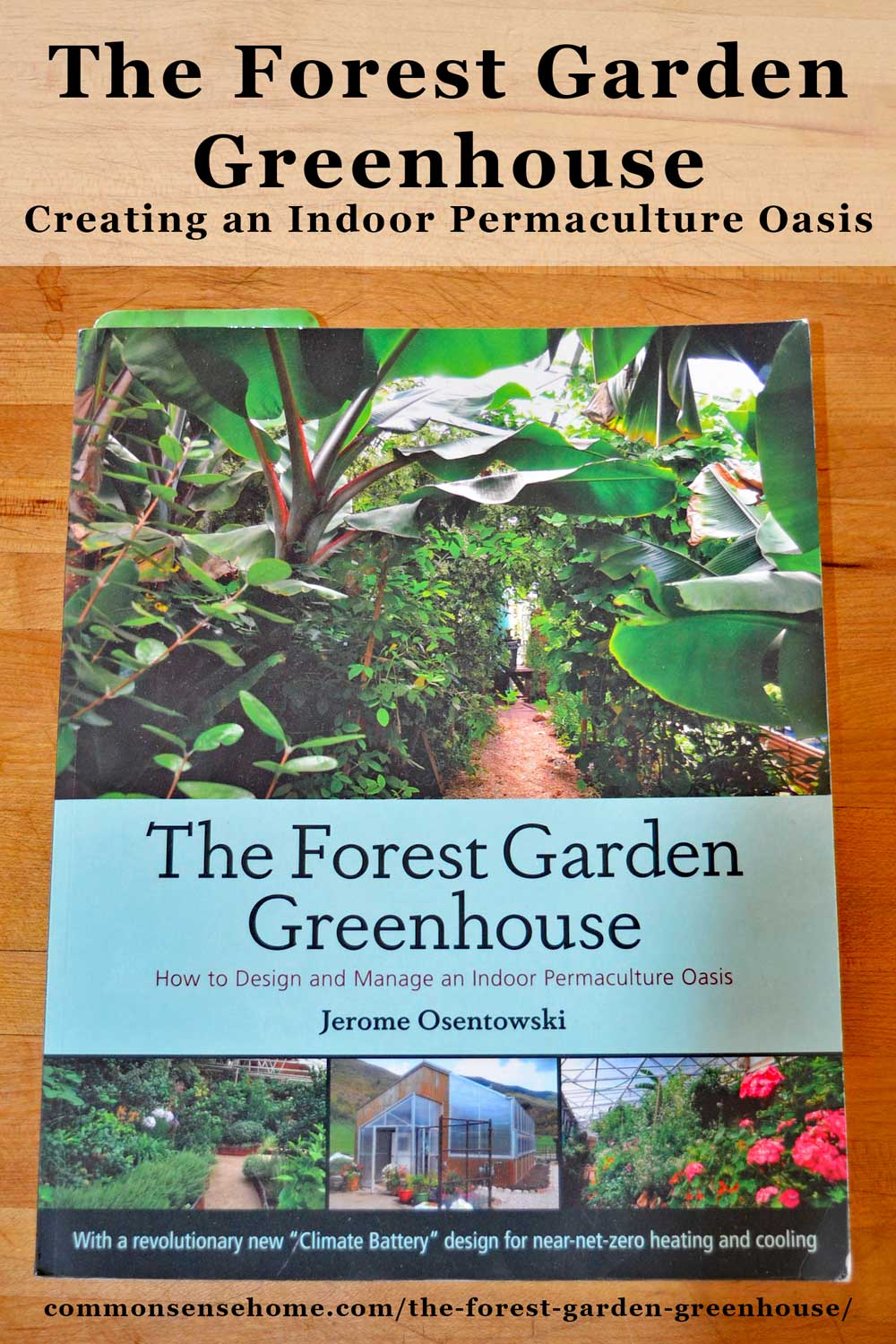 """The Forest Garden Greenhouse""will open your eyes to greenhouse possibilities beyond simple season extension. These greenhouses are an investment in abundance. #greenhouse #gardening"