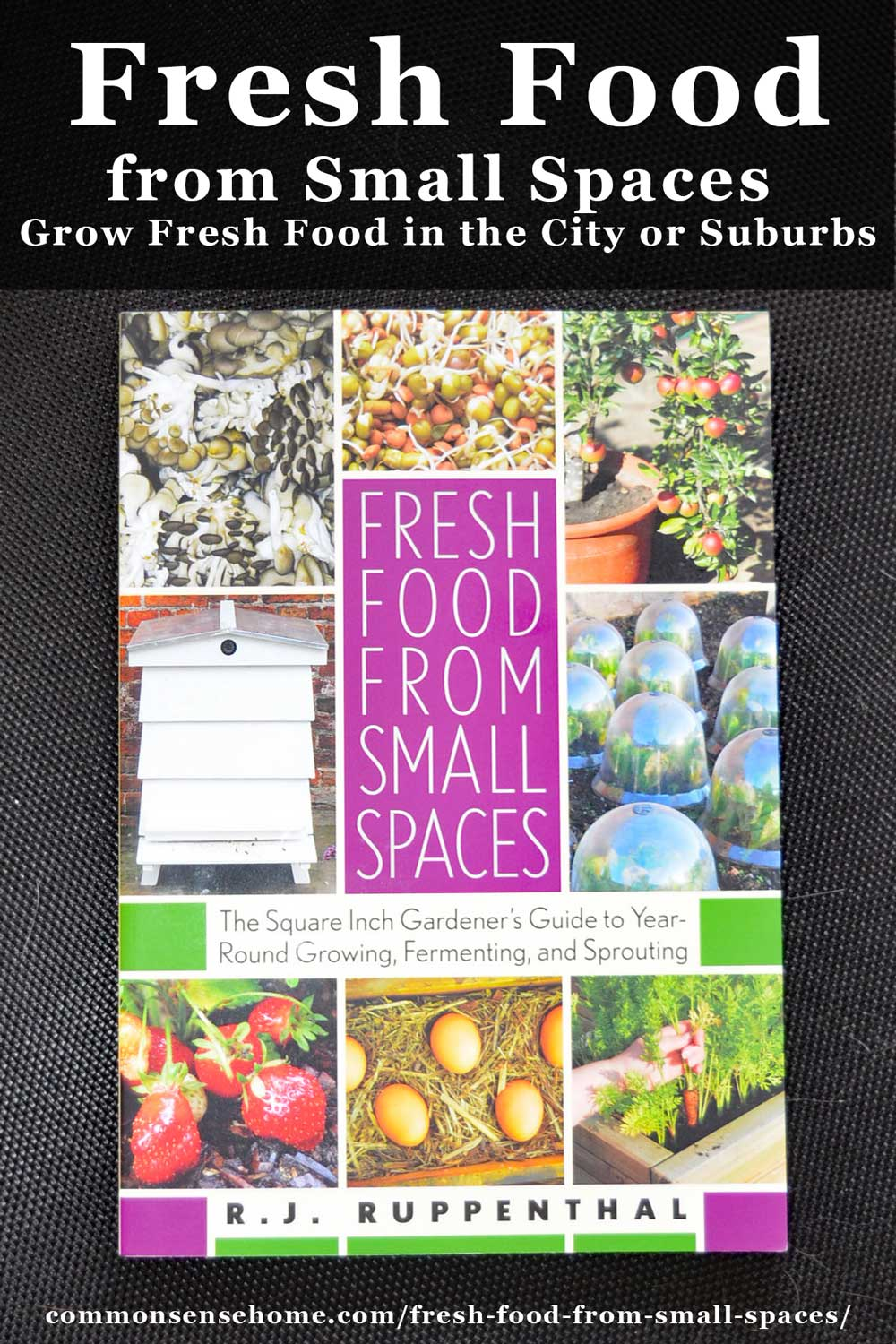 Fresh Food from Small Spaces - Grow Fresh Food in the City or Suburbs
