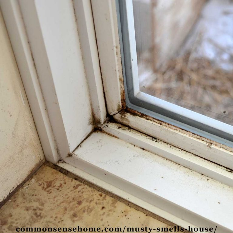 Musty Smells in the House – Finding Them and Getting Rid of Them