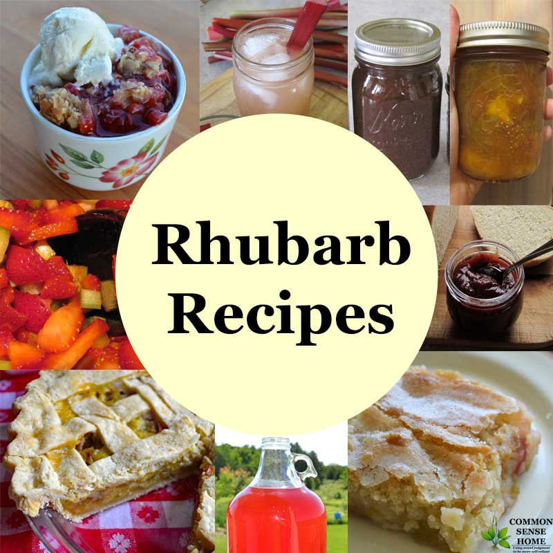 "collage of 9 different rhubarb recipes with text overlay ""Rhubarb Recipes"""