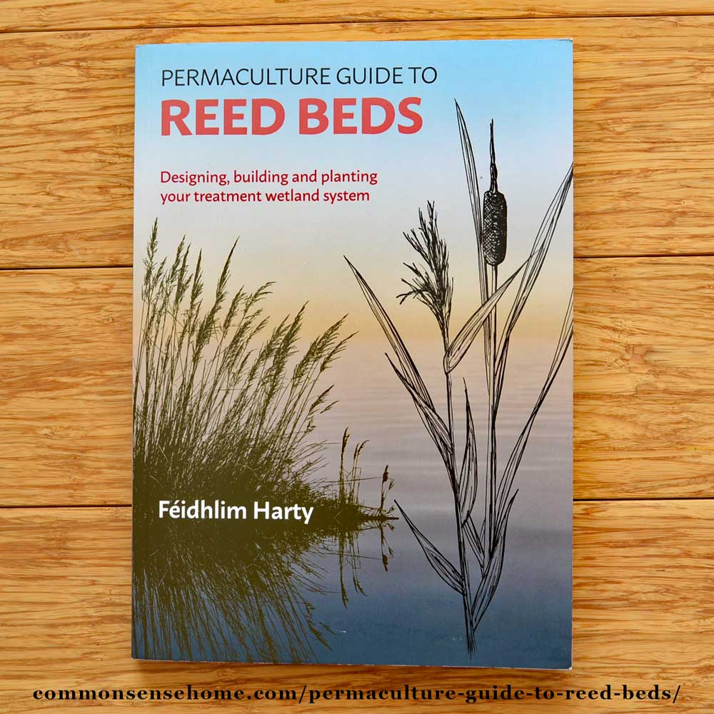 Permaculture Guide to Reed Beds for Home Wastewater Treatment