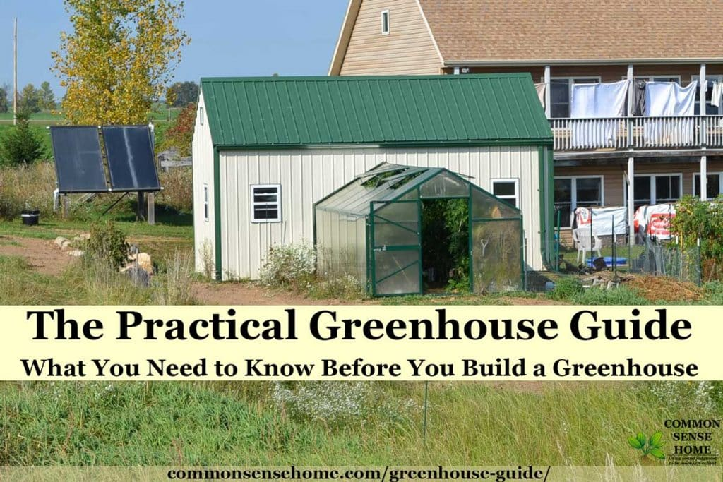 greenhouse attached to garden shed