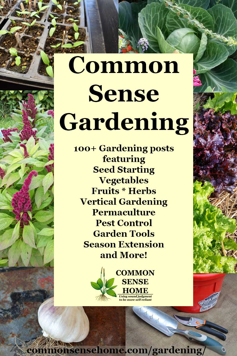 """Common Sense Gardening"" text overlay of garden images"