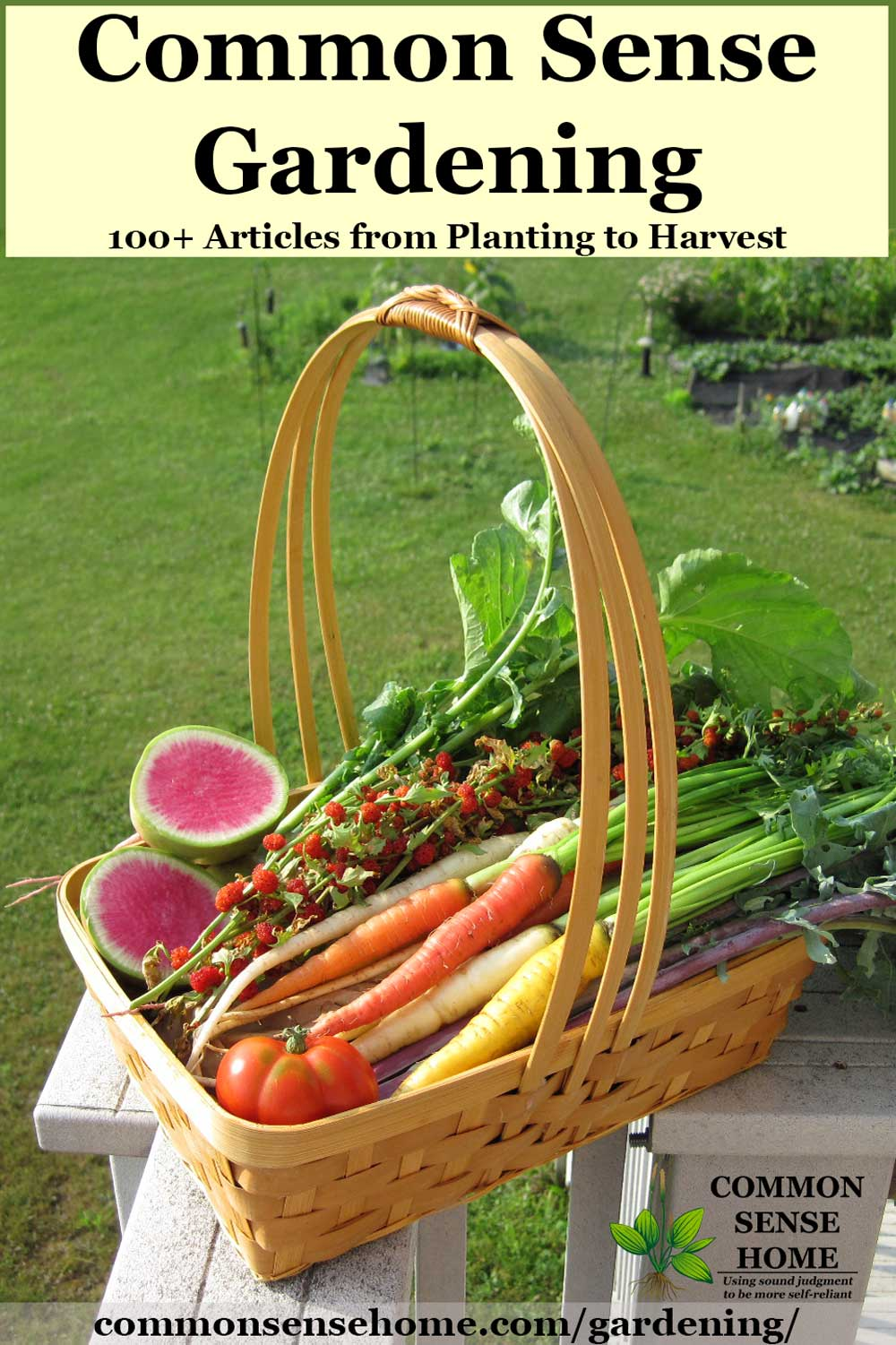 basket of brightly colored home garden produce