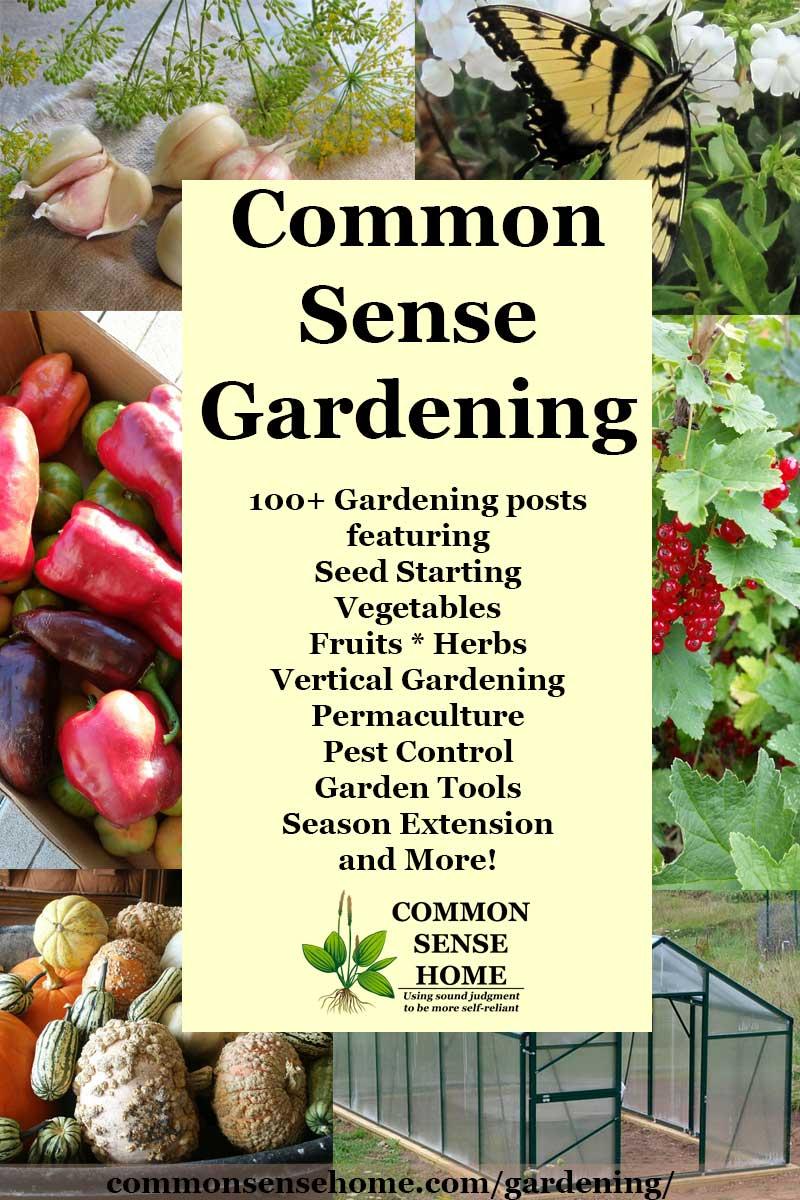 """""""Common Sense Gardening"""" text overlay of garden photos"""