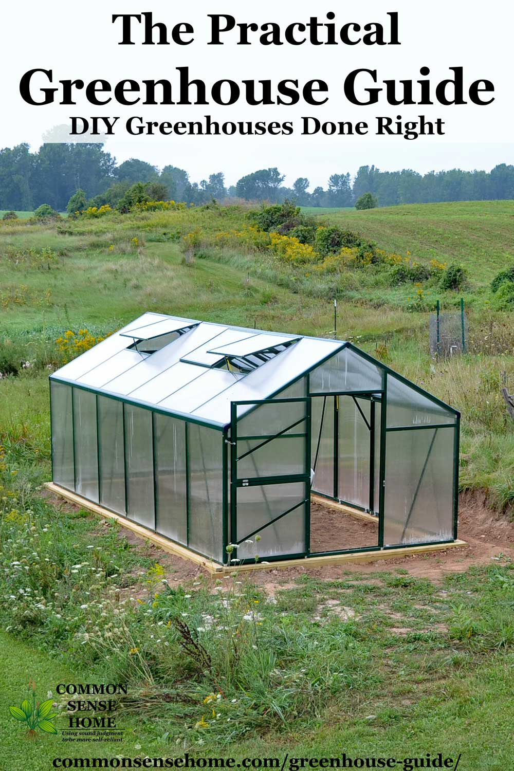 DIY greenhouse built from kit, sitting in green yard