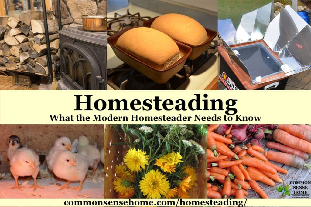 "Collage of homesteading image with text overlay, ""Homesteading - What the Modern Homesteader Needs to Know"""