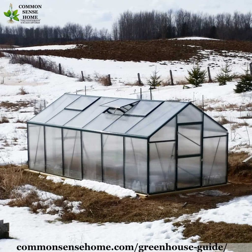 greenhouse in snow