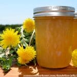 jar of low sugar dandelion jelly with dandelions against a blue sky