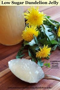 spoonful of low sugar dandelion jelly on cutting board with dandelions and jar of dandelion jelly