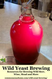 Gallon glass jug filled with hot pink wild wine