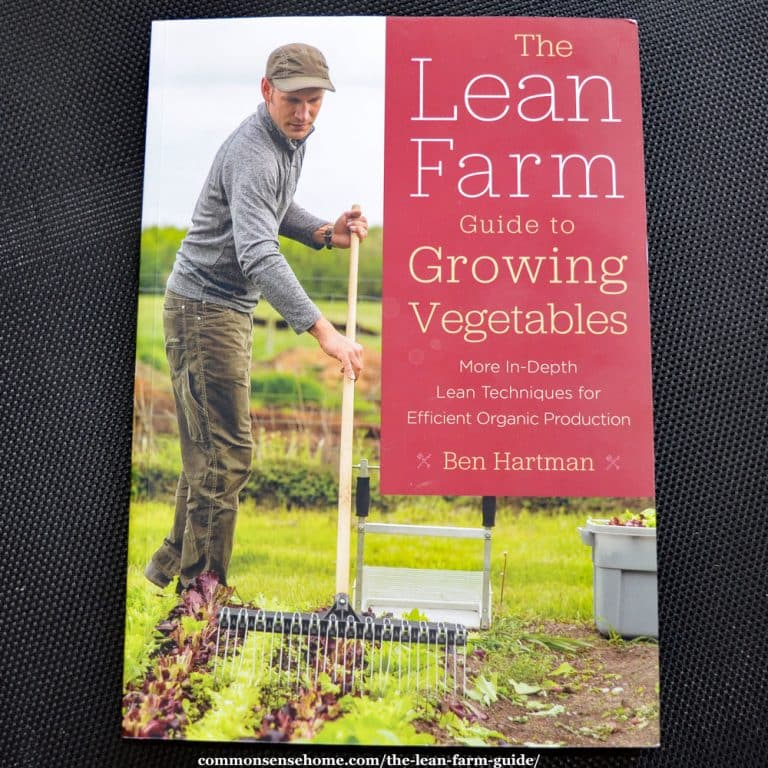 The Lean Farm Guide to Growing Vegetables – Efficient Organic Production