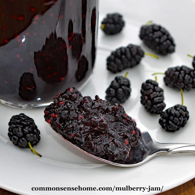 Mulberry Jam Recipe – Step by Step with Photos – Use Fresh or Frozen Berries