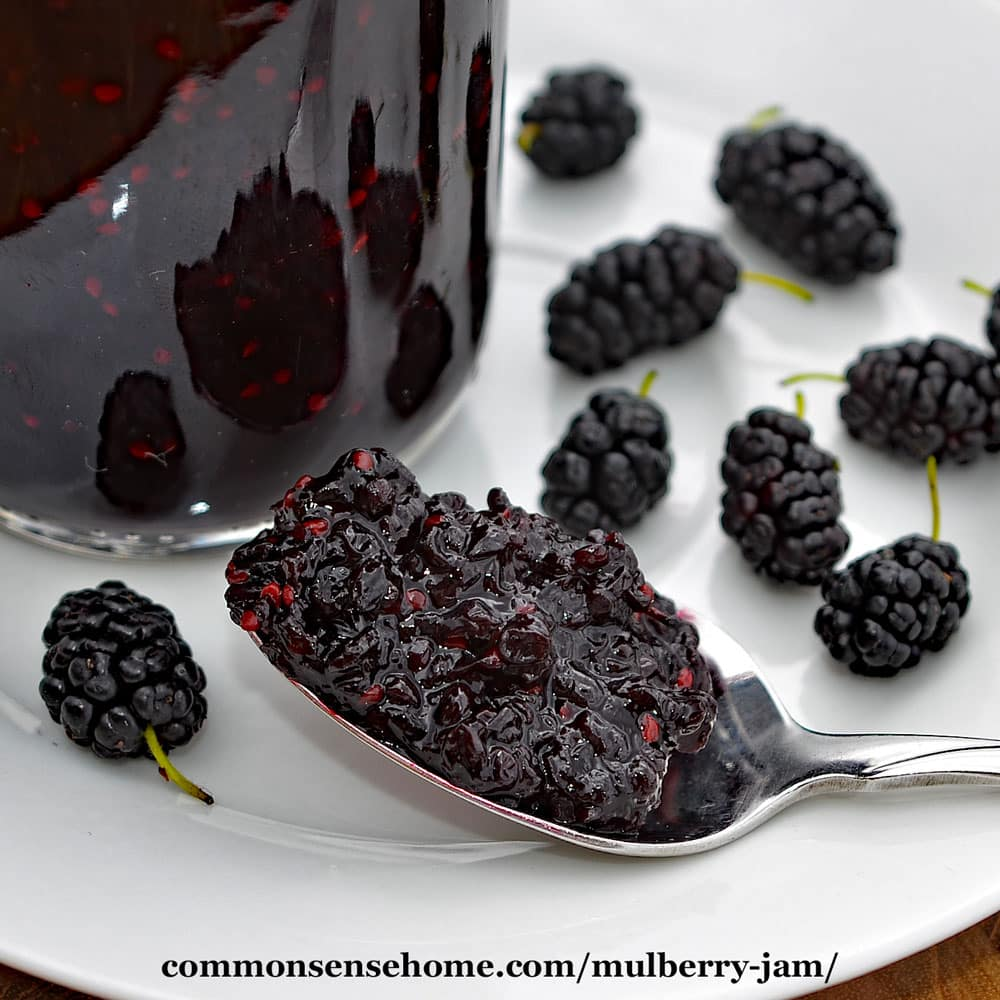 spoon filled with mulberry jam