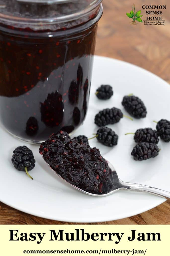 mulberry jam on spoon with mulberries in background