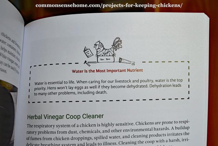 chicken project book interior