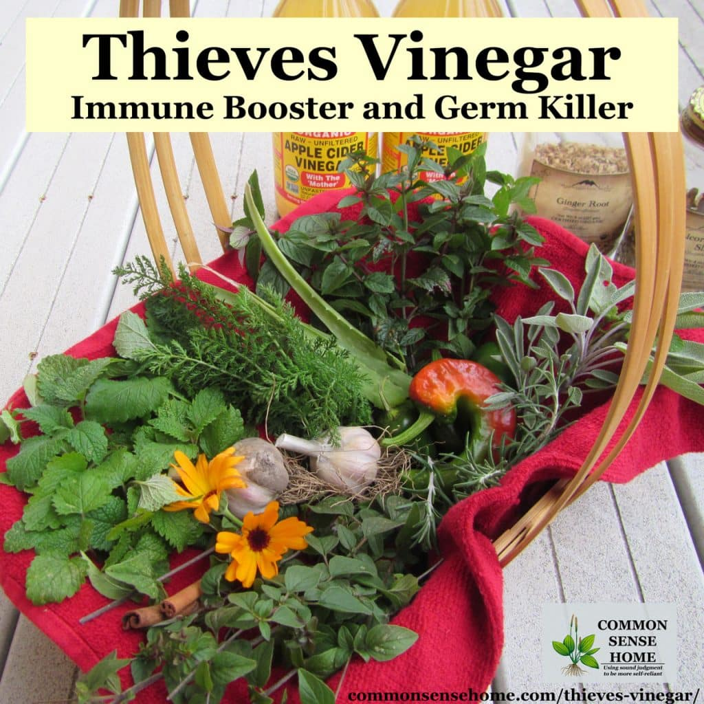 basket of thieves vinegar herbs