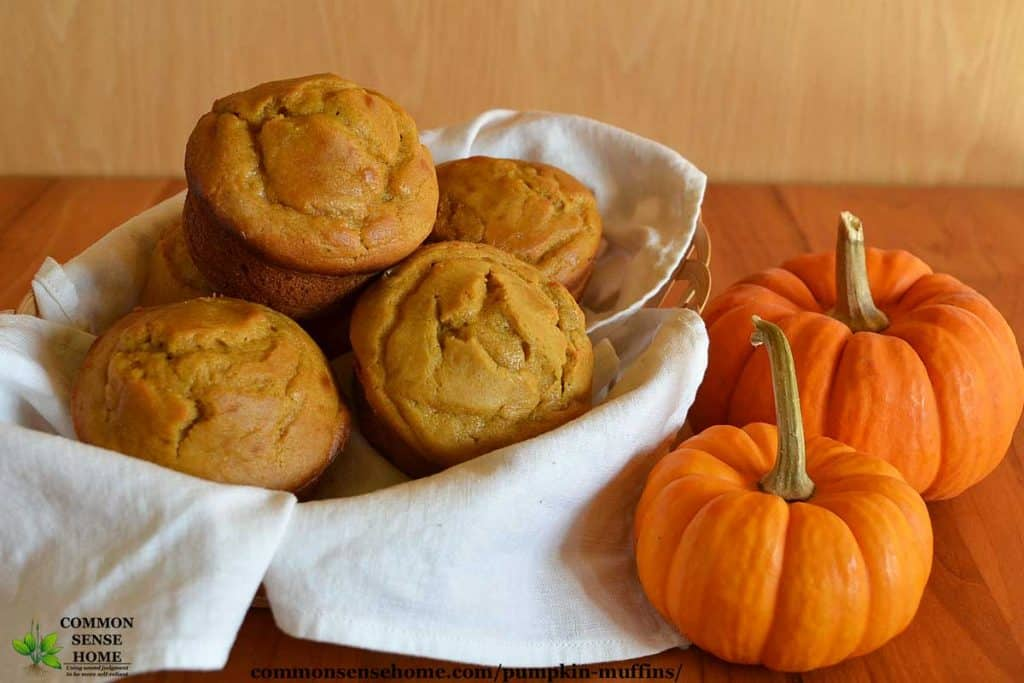 pumpkin muffins with mini pumpkins