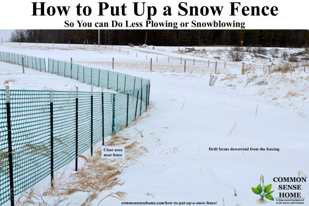 snow fence effect