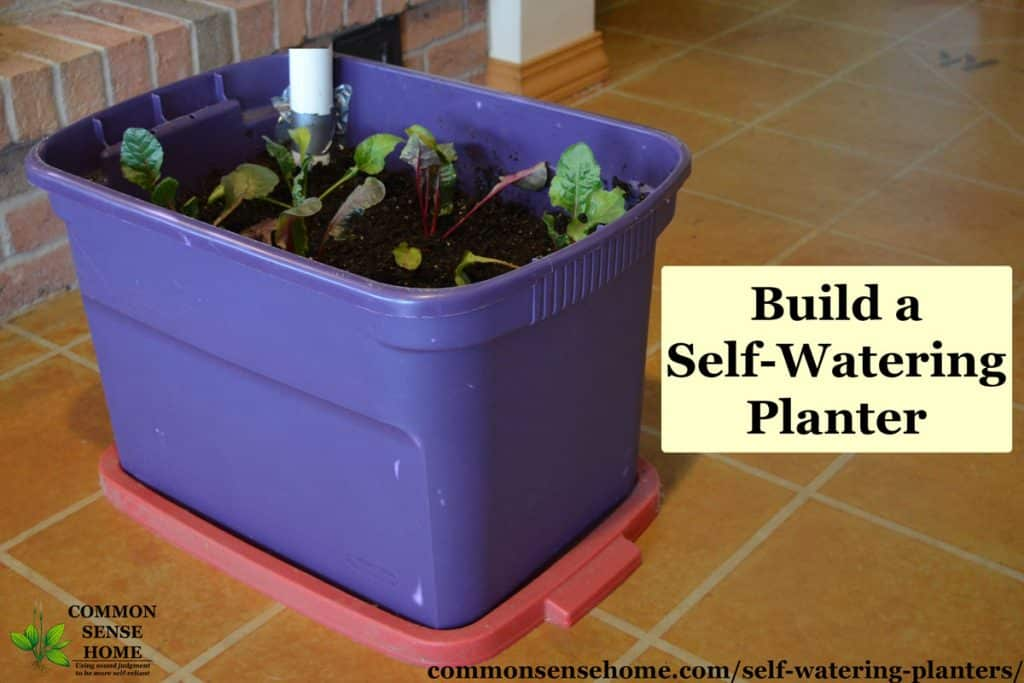 Self Watering Planters - DIY Demo, How They Work, Tips for Use