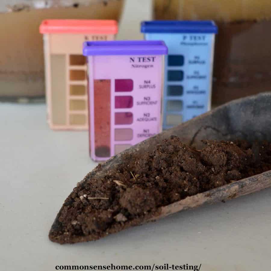 trowel full of soil with soil test kit