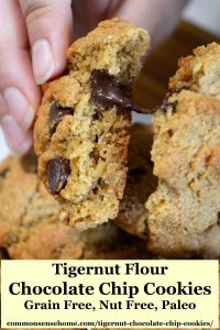 tingernut flour chocolate chip cookies