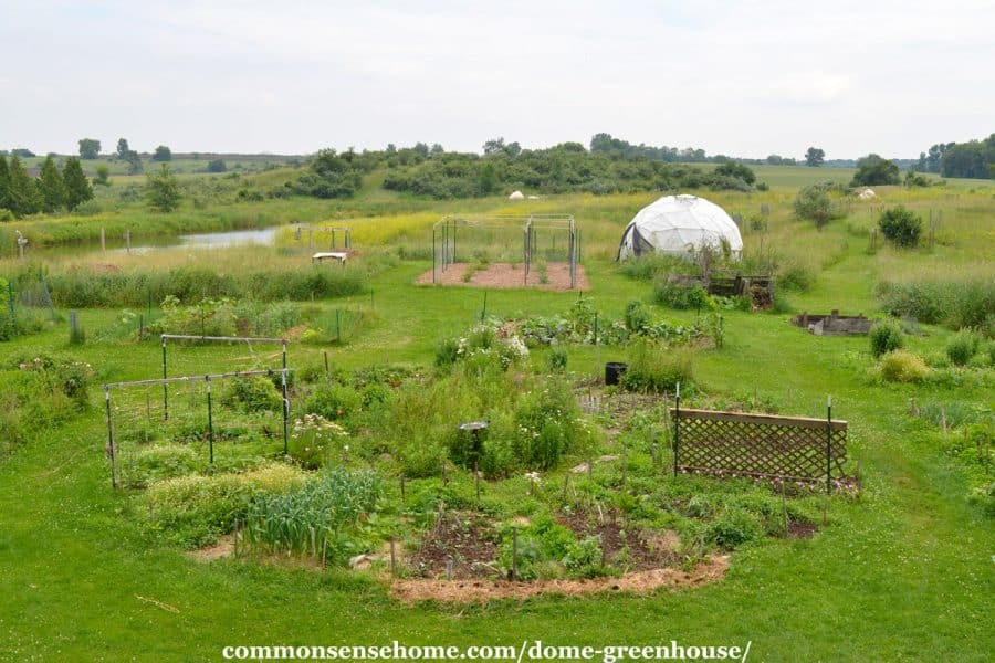 garden with greenhouse in distance