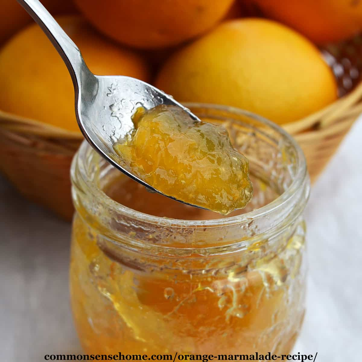 Orange Marmalade Recipe Quick Cooking Low Sugar